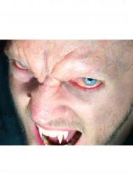 Testa de vampiro Premium