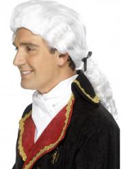 Peruca branca barroco adulto