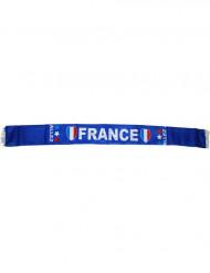 Cachecol adeptos França