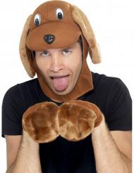 Kit acessórios cão adulto