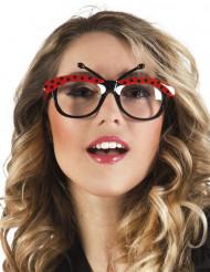 óculos joaninha adulto