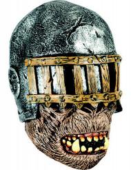 Máscara integral guerreiro adulto