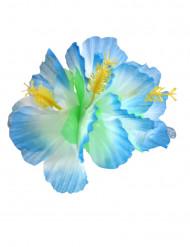 Flor azul havaiana