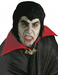 Kit Dracula adulto Halloween