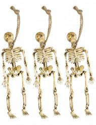 Decorações esqueletos pendurados Halloween