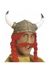 Bigode gaulês adulto