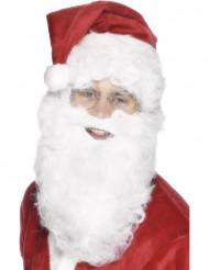 Barba branca 28cm adulto Natal