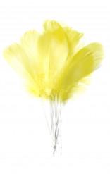 12 Plumas amarelas