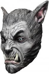 Máscara lobisomem cinzento adulto