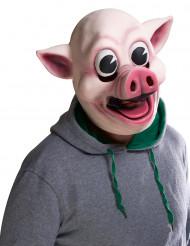 Máscara porco