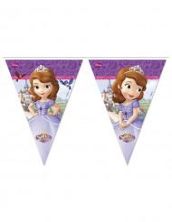 Grinalda de bandeirolas Princesa Sofia™