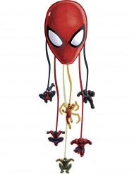 Pinhata Spiderman Web Warriors™