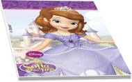 4 pequenos cadernos Princesa Sofia™ 5 x 6 cm
