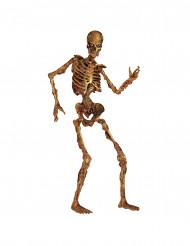 Decoração esqueleto articulado em decomposição Halloween