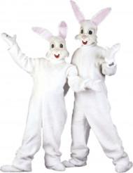 Disfarce Mascote coelho adulto