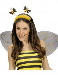 Bandolete abelha com pelo adulto