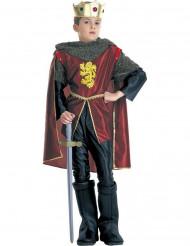 Disfarce rei cavaleiro menino
