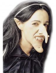 Kit bruxa adulto Halloween