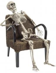 Esqueleto Halloween 160 cm