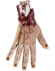 Mão cortada 25 cm Halloween