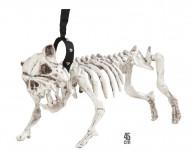 Cão esqueleto com trela Halloween