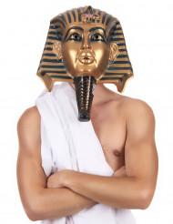 Máscara egípcio adulto