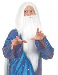 Peruca bruxo com barba homem