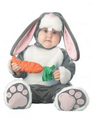 Disfarce Premium de coelho para bébé