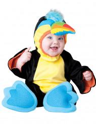 Disfarce Tucano para bebé - Premium