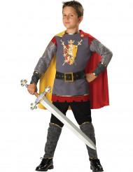 Disfarce Premium de cavaleiro para menino