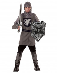 Disfarce de cavaleiro para menino