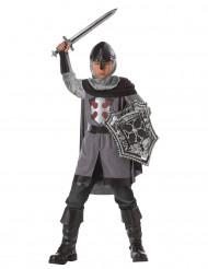 Disfarce de cavaleiro caçador de dragões para menino
