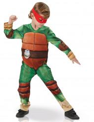Disfarce de Luxo forrado das Tartaruga Ninja™ para criança