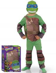 Disfarce luxo almofadado Tartaruga Ninja™ criança Coffret