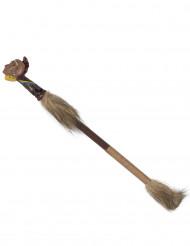 bastão mágico Indio para chamar a chuva