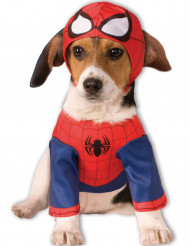 Disfarce para cão de Spiderman™