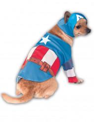 Disfarce para cão de Capitão América™