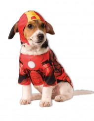 Disfarce para cão de Iron Man™
