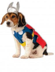 Disfarce para cão Thor™