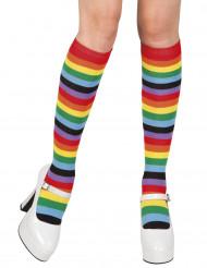 Meias arco íris mulher