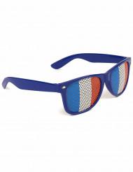 Óculos torcedor com bandeira francesa - adulto