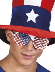 Óculos brancos com bandeira USA adulto