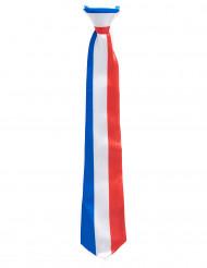 Gravata tricolor França