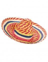 Sombrero mexicano colorido adulto