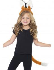 kit de raposa para criança