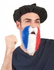 Barba adeptos França adulto