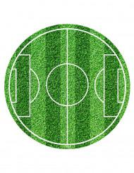 Folha de açúcar campo de futebol