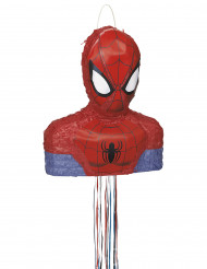 Pinhata Spiderman™