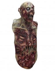 Máscara integral e busto zombie adulto Halloween