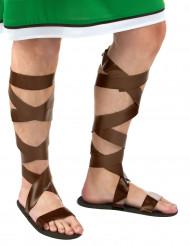 Sandálias romanas castanhas adulto